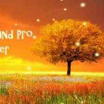 Awesome Land Pro LiveWallpaper v3.1.3 APK
