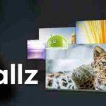 Wallz Pro: Wallpaper APP v1.5.2 APK